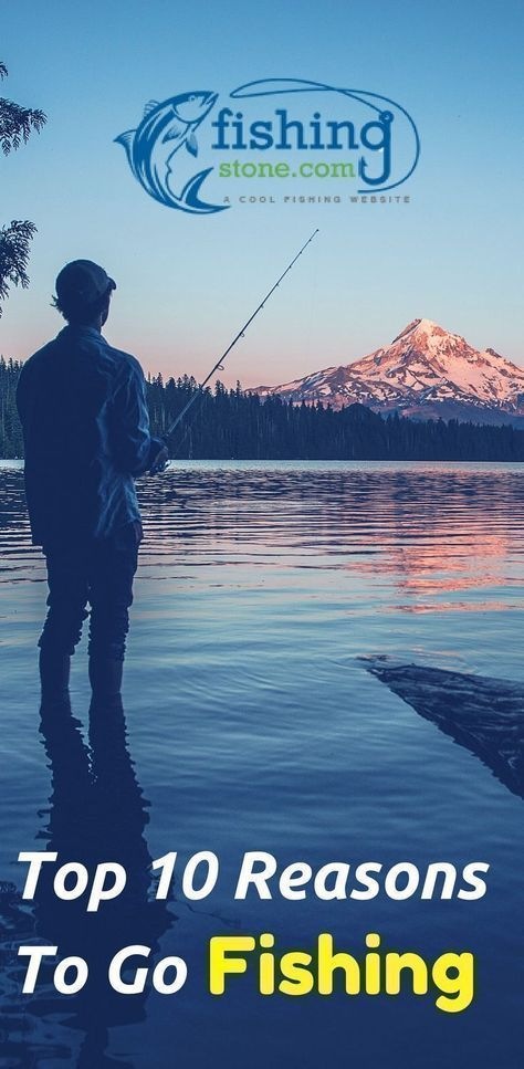 Top 10 Reasons To Go #fishing - go fishing jar   go fishing game   go fishing mason jar   go fishing they said   go fishing quotes   Lets Go Fishing Hunting   Go Fishing Often!   Go Fishing Dubai   Go fishing to relax the mind   Go fishing party   Go Fish