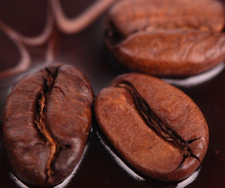 Arabica und Robusta im Vergleich - Was du über die Unterschiede der Kaffeesorten wissen solltest: https://www.kaffee-miete.de/tipp/16/07/unterschiede-kaffeesorten-arabica-robusta