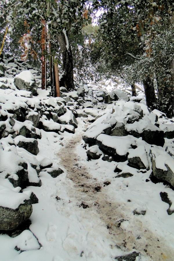 Ice House Canyon Trail: Outdoors, House Canyon, Canyon Trail, Ice House, Paths I D, Hiking, Escape, Follow