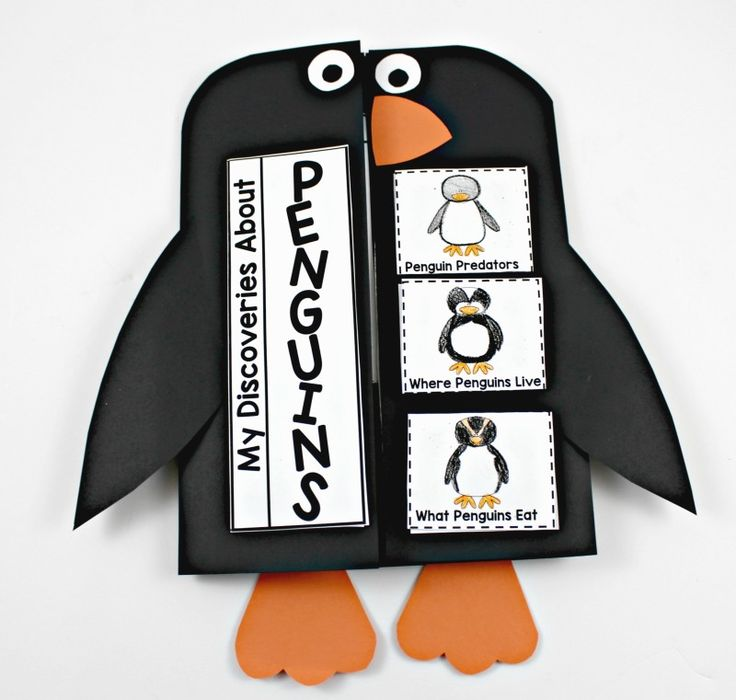 Penguin Interactive Science (Tunstall's Teaching Tidbits) | Penguins ...