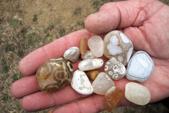 Image detail for -Go Hunting for Agates - 101 Things To Do Humboldt County