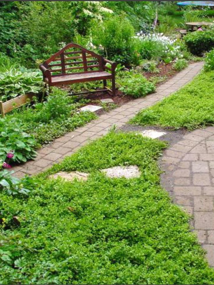 replacing your lawn with landscaping