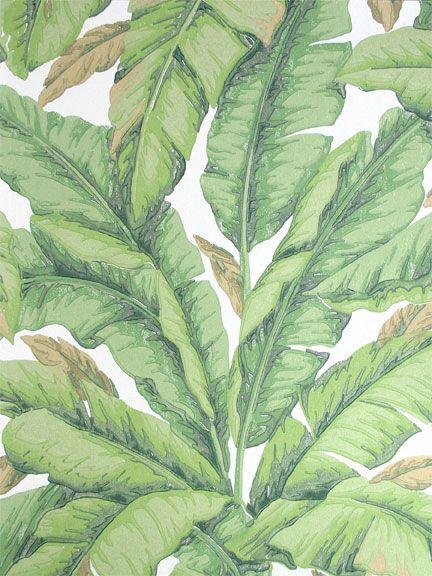 Removable wallpaper floors walls pinterest trees for Paintable temporary wallpaper