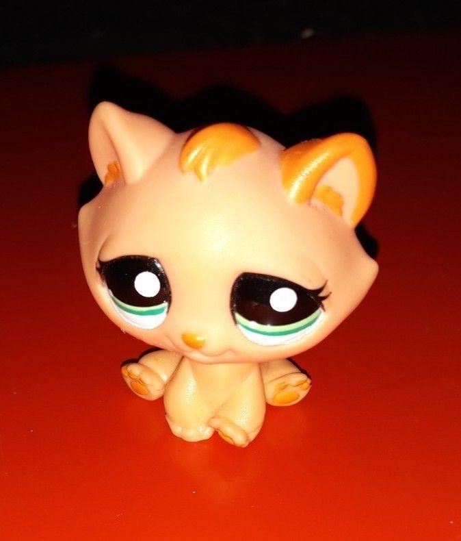 Details Zu Littlest Pet Shop Katze Figur Lps 815 Littlest Pet Shop