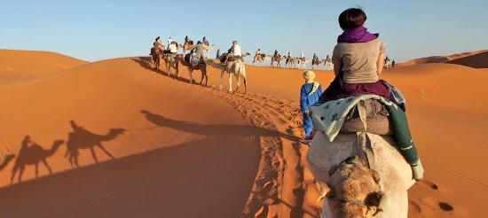 Morocco Caravan Tours (recommended by Ahmet)