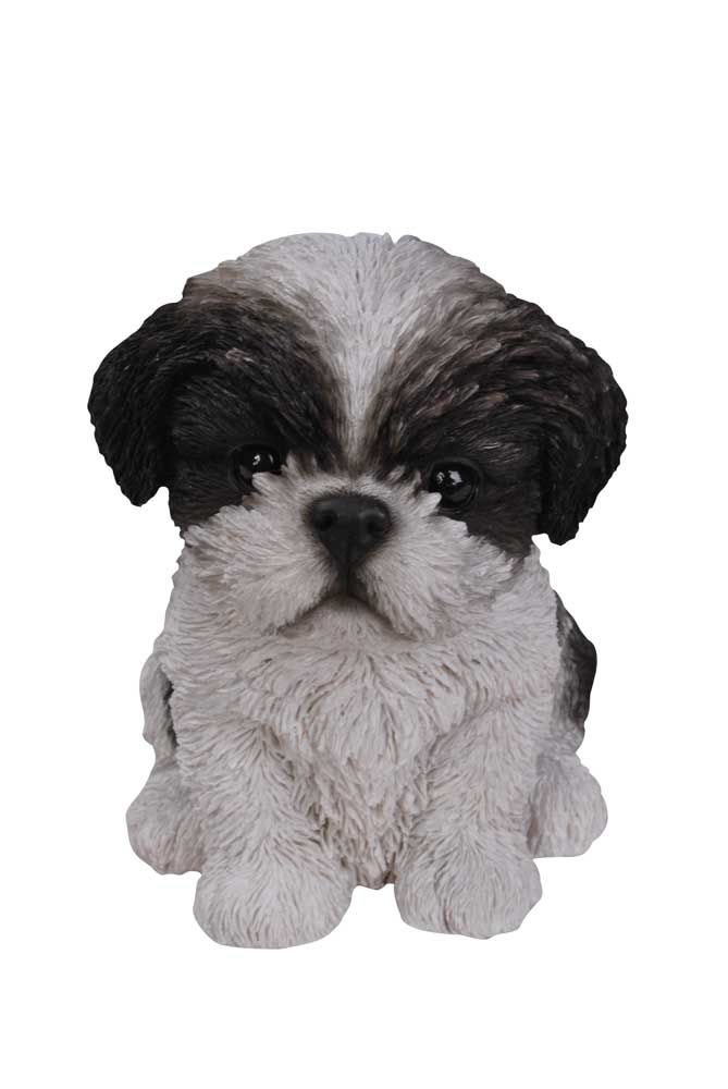 Found It At Wayfair   Sitting Shih Tzu Puppy Statue