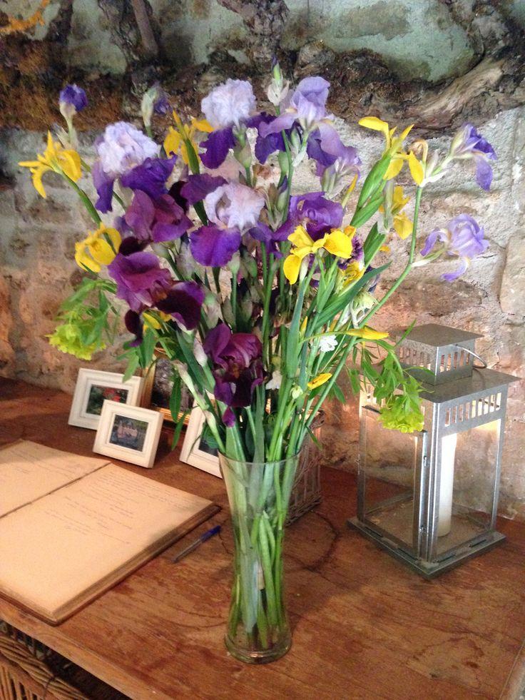 Iris à la Foulerie - Mai 2015