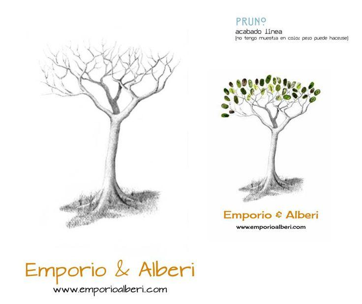 Pruno. Menos de 40 huellas. Cuadro de huellas / Árbol de huellas www.emporioalberi.com