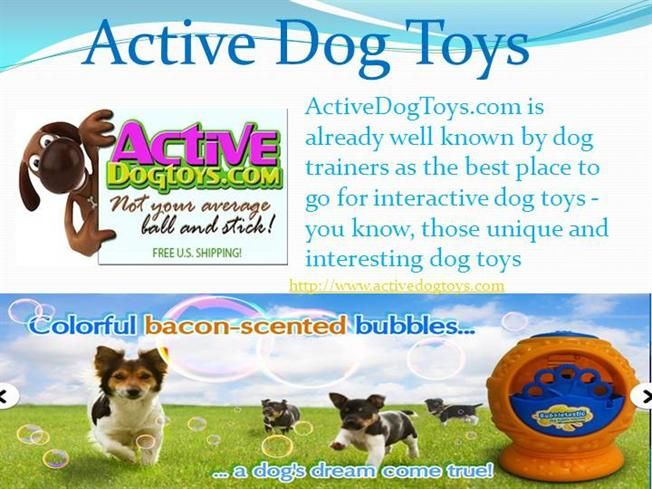 We are constantly on the lookout for new dog toys , you'll see that we are constantly adding new dog toys to our collection child's   play with these toys.they are very happy.Loading for more information visit us at:-http://www.activedogtoys.com/.