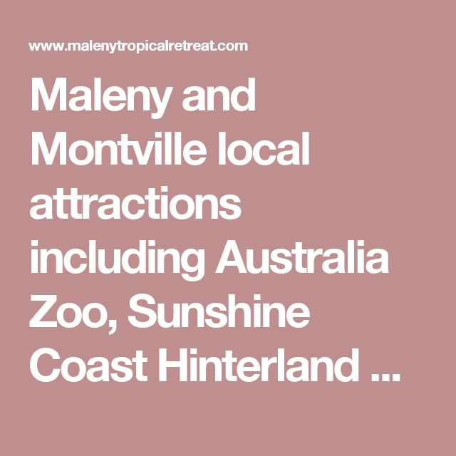 Maleny and Montville local attractions including Australia Zoo, Sunshine Coast Hinterland Queensland.