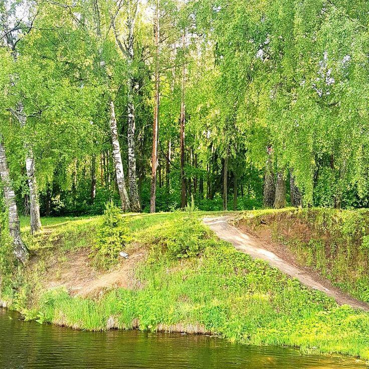 """Серия """"Фотоохота за чайкой""""�� Посетив парк им. Революции 1905 гола в г. Иваново и добравшись до прекрасного местечка рядом с рекой, я решил пофотоохотиться за летавшими там чайками�� не знаю, получилось или нет. А вы как думаете? ____________________________________ #Ivanovo #park #nature #river #seagull #photo #hunt #photohunt #Иваново #парк #природа #река #чайка #фото #охота #фотоохота http://misstagram.com/ipost/1542755139740197436/?code=BVo96Avn2I8"""