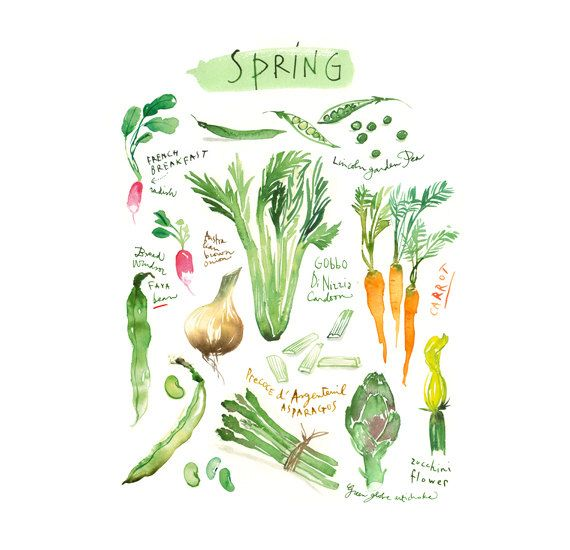 1000 Ideas About Green Kitchen Paint On Pinterest