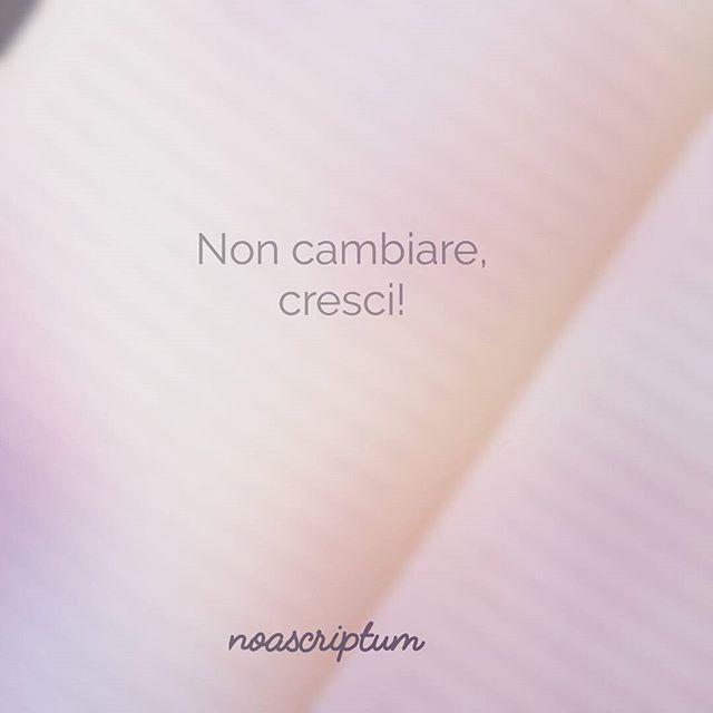 Caro Diario #carodiario #iomicito #poesia #frasi #pensierieparole #riflessioni #aforismi #arte #crescita #crescere #cambiare #interiore #anima #vita