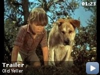 OLD YELLER, 1957  Young Travis Coates is left to take care of the family ranch with his mother and younger brother while his father goes off on a cattle drive in the 1860's. When a yellow mongrel comes for an uninvited stay with the family, Travis reluctantly adopts the dog. After a series of scrapes involving raccoons, snakes, bears and all manner of animals, Travis grows to love and respect Old Yeller, who comes to have a profound effect on the boy's life.