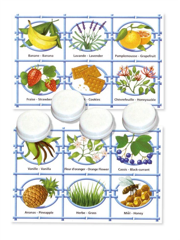 Sur le principe du loto, ce grand classique du jeu éducatif initie les plus jeunes comme les adultes aux parfums et aux odeurs et développera leur odorat tout en samusant. Contient 5 planches de loto et 3 boîtes odeurs : eucalyptus, melon, vanille, champignon, muguet, violette, lavande, noix de coco, cassis, savon, miel