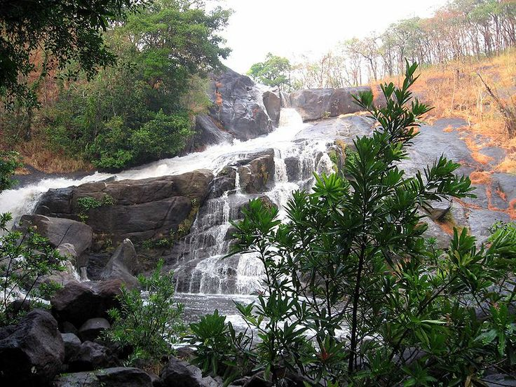 Meenmutty Falls is located 29 km from Kalpetta in Wayanad District. It is a 3-tiered waterfall with a height of 300 metres. It is the largest and most spectacular waterfall in Wayanad. It is Kerala's second largest waterfall and the one most unspoiled in its natural setting. Each of its three tiers requires a separate hike through a moist, deciduous forest. The path is quiet dangerous and tiresome, but the waterfalls are worth it.