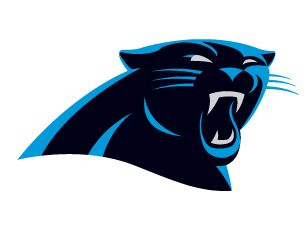 NFL Atlanta Falcons at Carolina Panthers Fan Package November 3, 2013 - goalsBox™