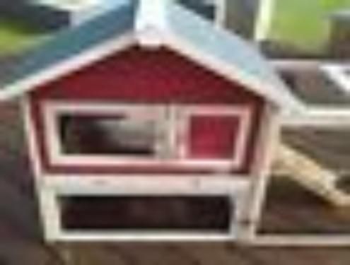 die besten 17 ideen zu meerschweinchen kaufen auf. Black Bedroom Furniture Sets. Home Design Ideas