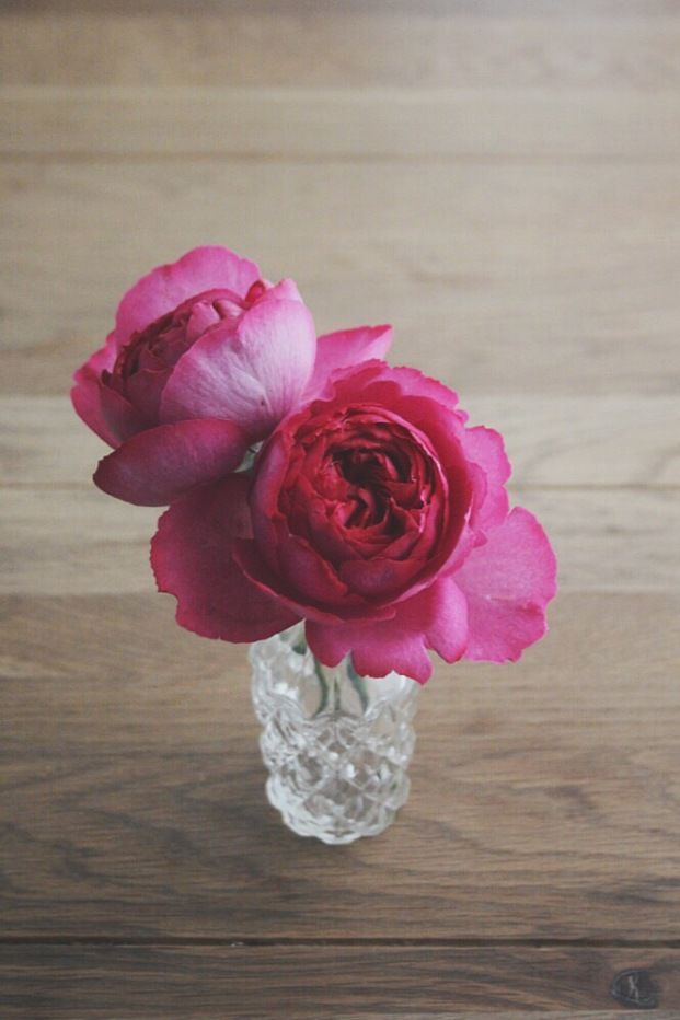 "The ""Rose Piaget"" may look like a peonie but it has a delicate rose perfume. La mariee aux pieds nus Rose piaget"