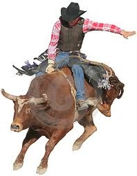 bull-rider - The National High School Rodeo Finals......