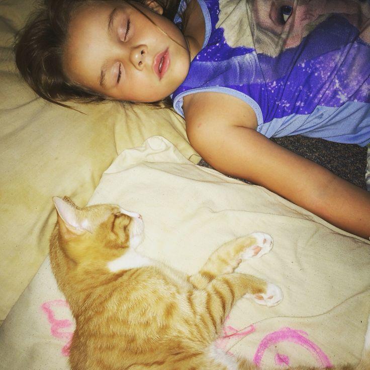 Isabelle sleeping and Simba Sleeping lol