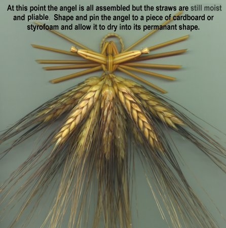 Wheat weaving - nearly finished straw angel.  http://www.wheatweaving.com/project2.html#