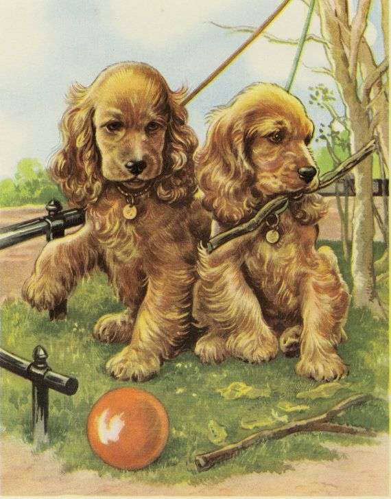 Vintage Dog Print Cocker Spaniel Puppies by AntiquePrintBoutique, $29.00