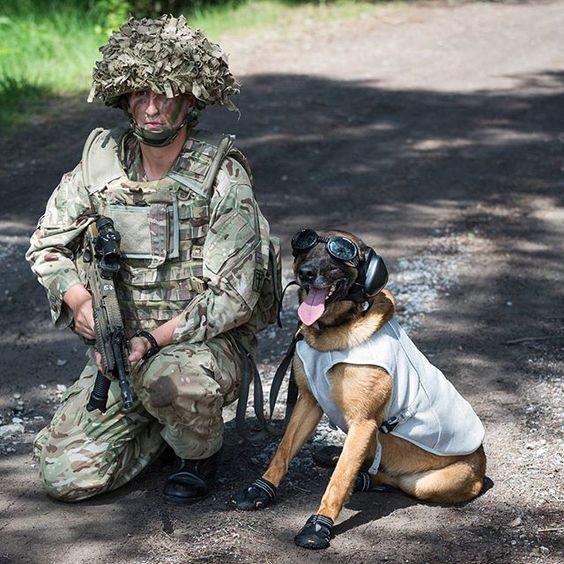 British Army (@BritishArmy) | Twitter