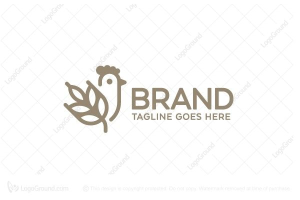 Logo for sale: Chicken and Wheat Logo, Cereal, Grain, Farm, Wheat, Grow, Agricultural, Farmers, Farmhouse, Plantation, Farmland, Chicken, Egg, Rooster, Designers, Branding, Logos