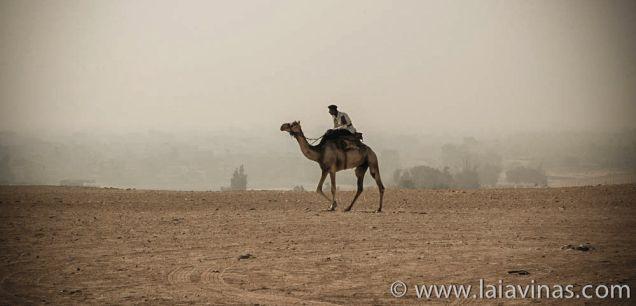 Egypt-7