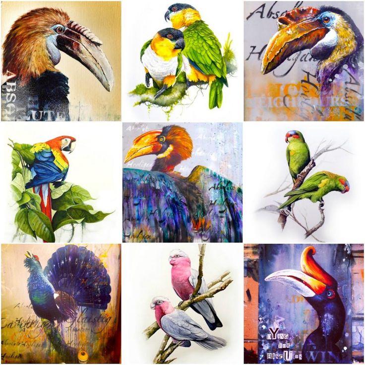 Absolute hooligan bird art - Tim niall-harris sub urban exotic bird graffiti art spray paint parrot art