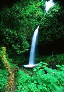 Upper Latourell Falls ©Greg Lief