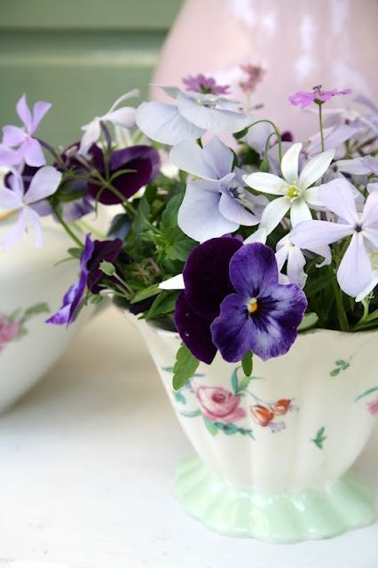 32 best flowers and teacups an obsession images on pinterest tea cup and flowers mightylinksfo Images