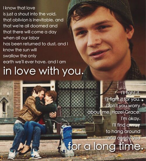 Quotes From The Fault In Our Stars: The Fault In Our Stars Quote