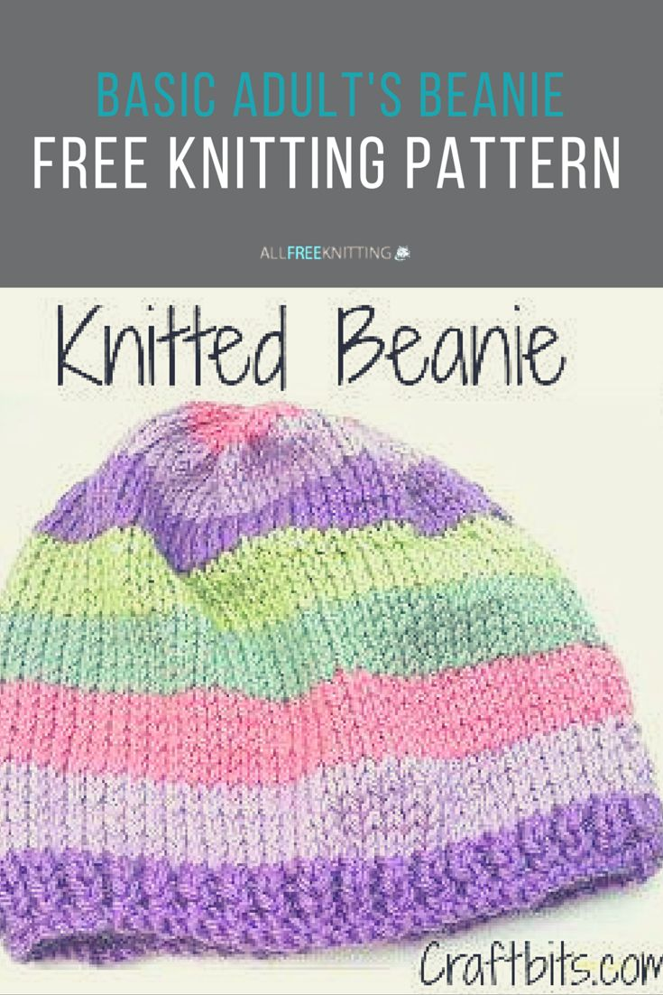 Easy Knitting Ideas For Adults : Basic adults knitted beanie the o jays easy knitting