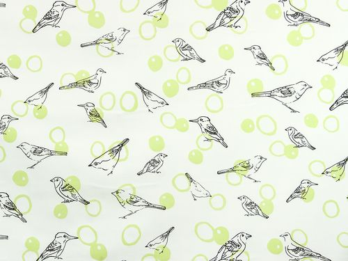 Birds in Bubbles - Lisa Strachan  Pistachio and Shadow on White