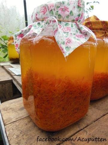 Goudsbloemolie Marigold Calendula Goudsbloem De lintbloempjes van de goudsbloemen worden getrokken in olie. Hieruit ontstaat een prachtige goud-oranje olie. Deze olie kan is befaamd vanwege   http://wqd.nl/goudsbloem