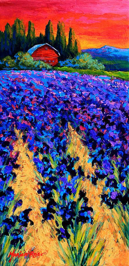 Floral Painting - Iris Farm by Marion Rose