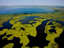 Danube Delta & Carpathian Mountains in Romania are famous for its beauty, wildlife and river deltas. Peaceful protected habitat for peace and love friendly peoples.