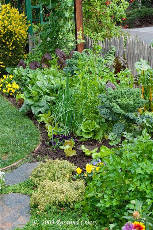 Love this...Beautiful edible garden that blends right into the landscape and helps fight pests. Why should a veggie garden be restricted to boring rows? .  Several garden plantings provided with exact vegetables and field notes.