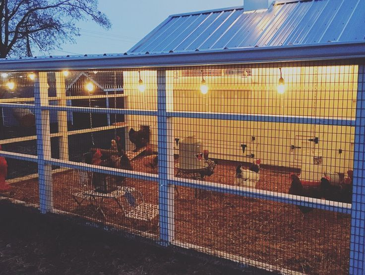 Cluckingham Palace 7x12 Chicken Coop With Feed Room