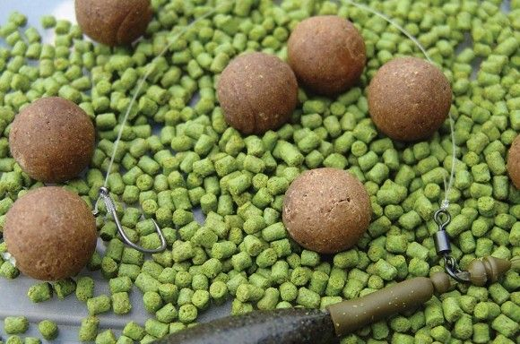 How to tie the Stiff Bottom D-Rig - Articles - CARPology Magazine