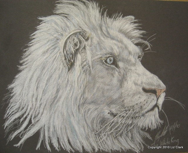 The White King done for @LIONAID in 2010