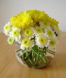 Crea arreglos florales en pocos pasos