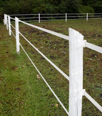 electric fencing for horses how to set up