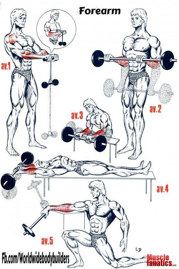 Fitness Training Tips: Personal Trainer - FOREARM WORKOUTS