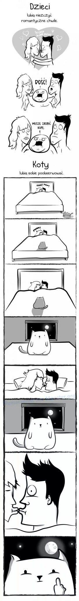DZIECI vs KOTY #dzieci#dziecko#koty#kot#kotki#humor#posiadaniedziecka#posiadaniekota#wyzwania#5