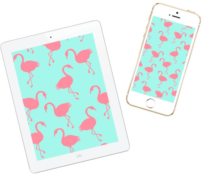 Flamingo Love Wallpaper