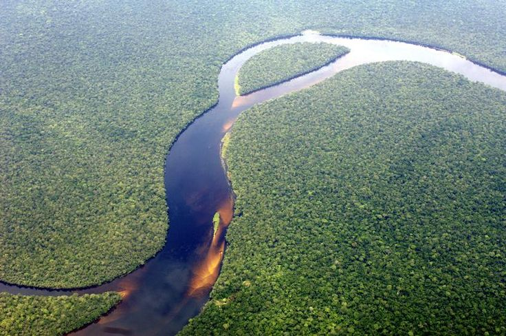 Congo Rainforest - Aerial view of the Congolese rainforest. Taken on a flight from Kinshasa to Bumba. © Thomas Einberger / argum / Greenpeace