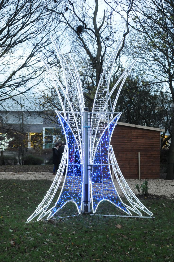 Shimmering lights at St Hilda's Church Gardens. #Christmas #festive #southtyneside